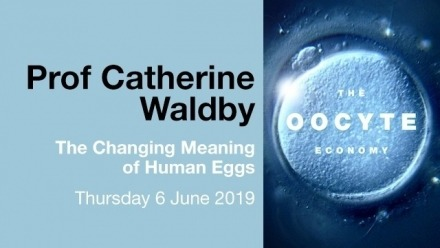The Oocyte Economy: in conversation with Prof Catherine Waldby